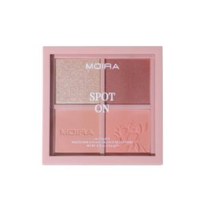 MOIRA Spot On Face Palette pakend
